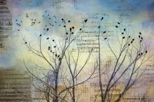 birds-singing-1024x682