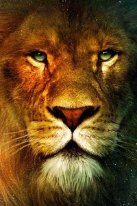 A big ol' friendly lion named Aslan.