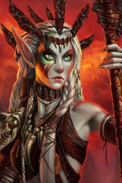 An elf woman with long braided blond hair stands with a long spear.