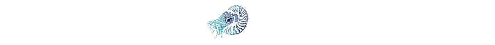Blue Nautilus Art