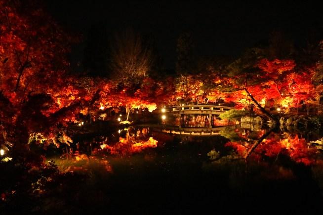 京都の永観堂の紅葉