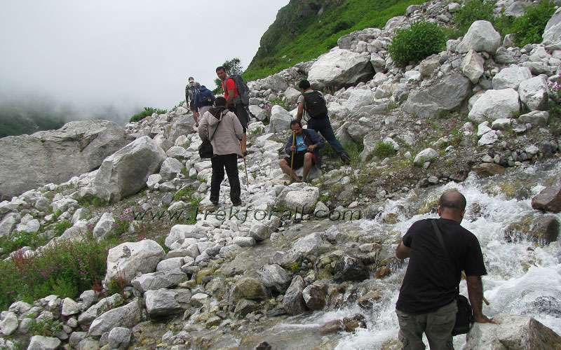 Our group coming back and crossing a shallow stream. We went up to 10 kilometers inside the Valley of Flowers. Generally you need to take off your shoes while crossing such streams.
