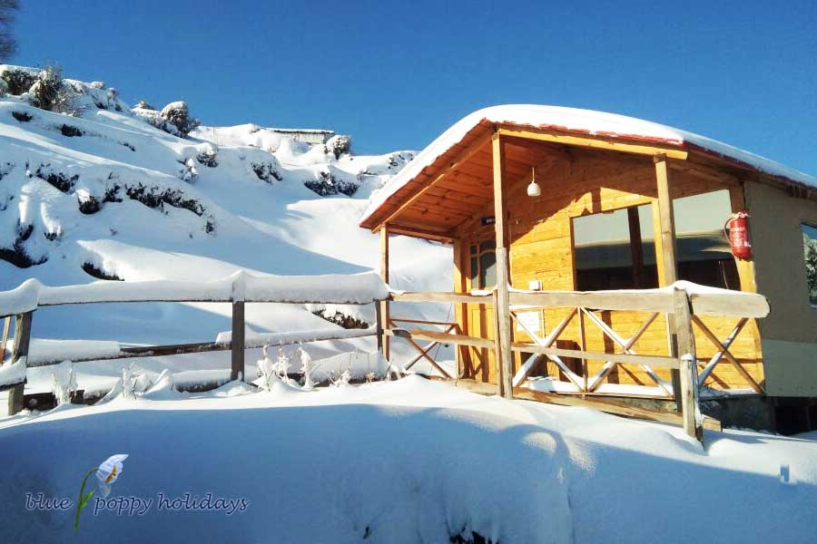 Blue Poppy Resorts Auli