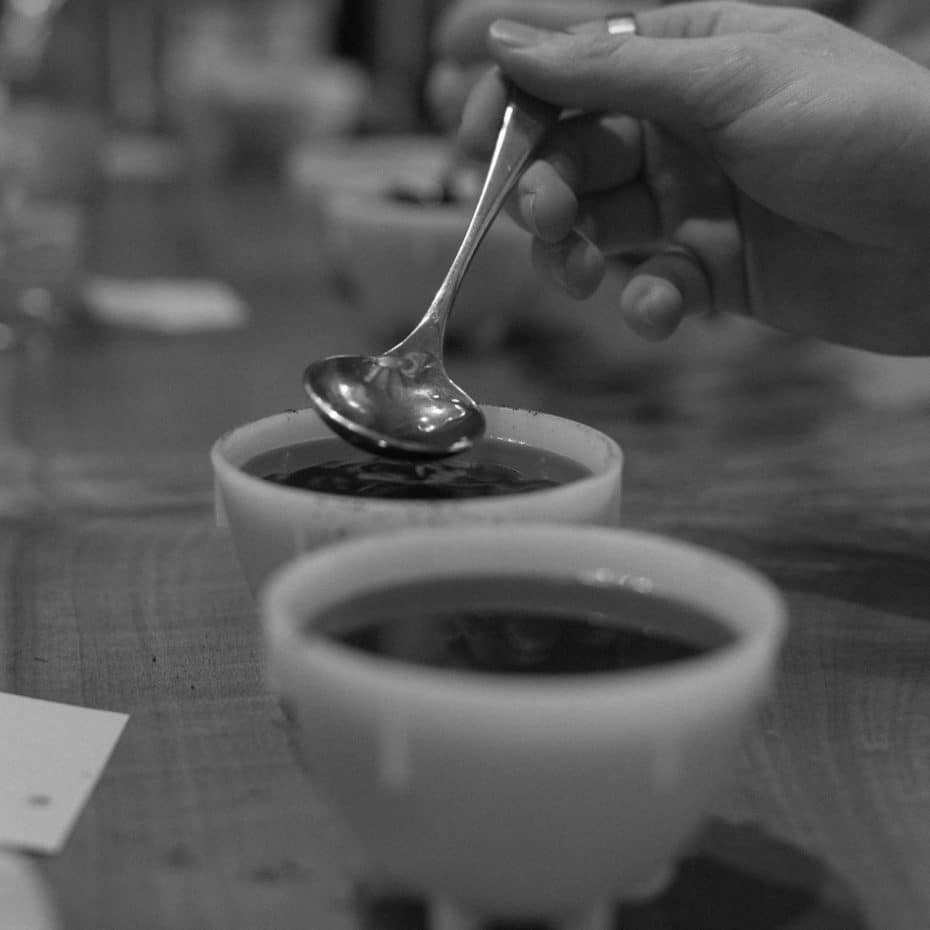 A sample of coffee is gathered in a spoon for taste evaluation during a cupping.