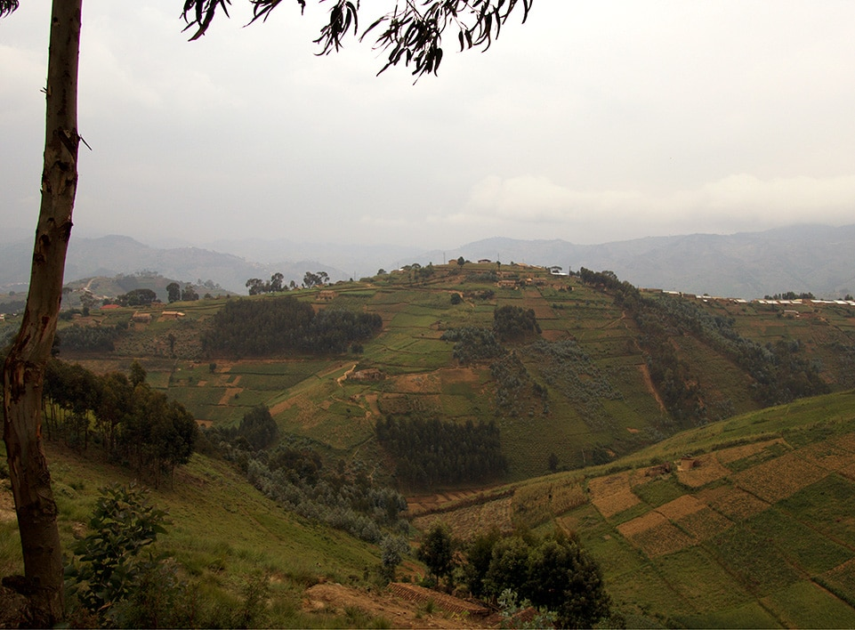 Rwanda is often referred to as the land of a thousand hills.