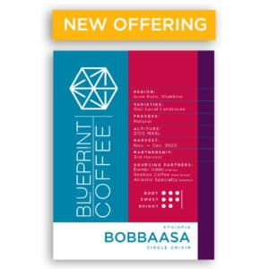 A 12oz bag of Bobbaasa Coffee beans from Ethiopia, which are roasted by Blueprint Coffee.