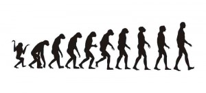 Is evolution true? Or is it just a cartoon?