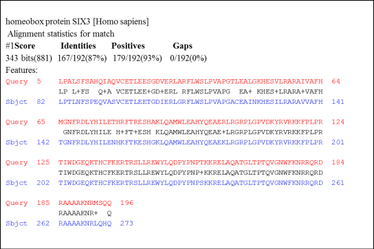 Amino acid alignment of two proteins from the Six3/6 gene.
