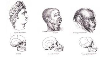 Darwin's development of racism.