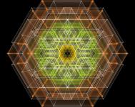 Human Portal