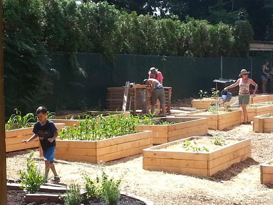 Blueridge Sharing Garden