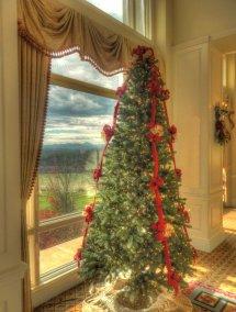 Biltmore Inn Christmas Tree Living In Blue Ridge