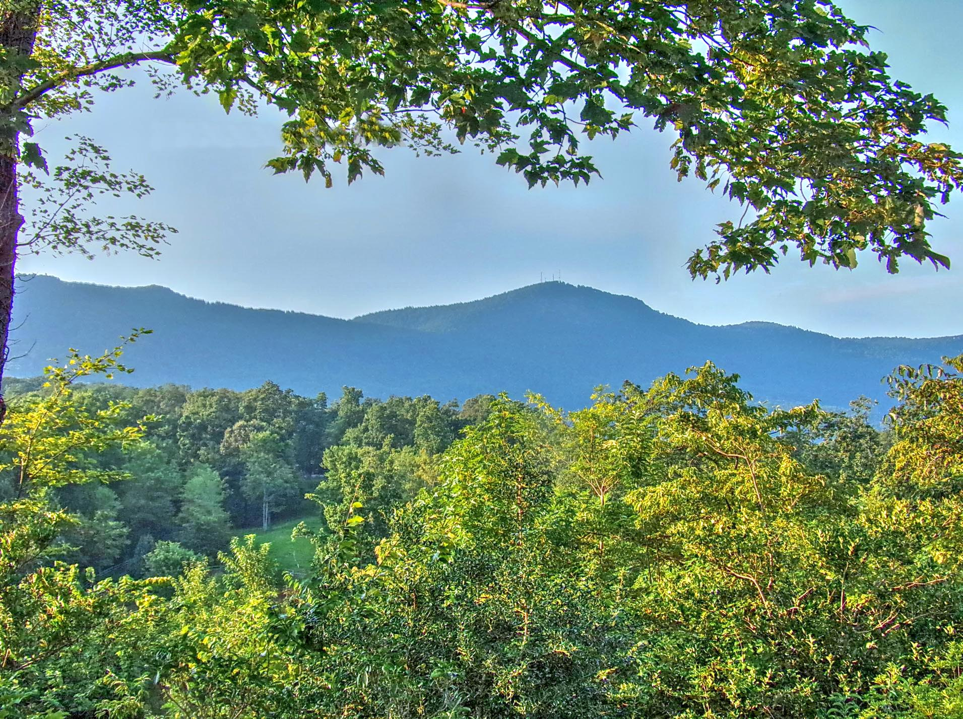 Between the Ridges in Tryon North Carolina  Living in