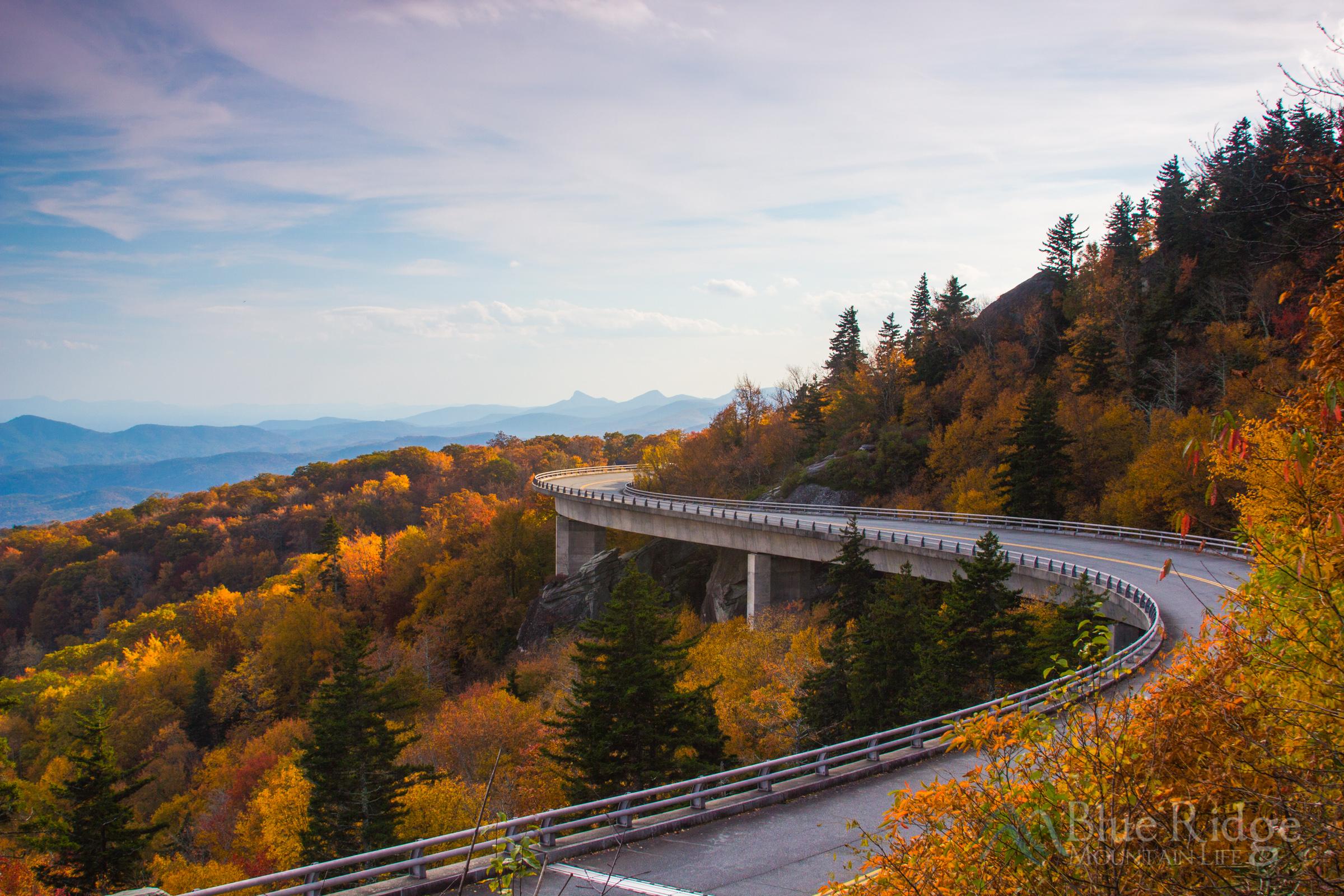 fall foliage 2019 forecast