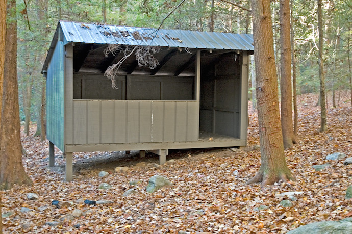 Pioneer Campsite in Vogel State Park