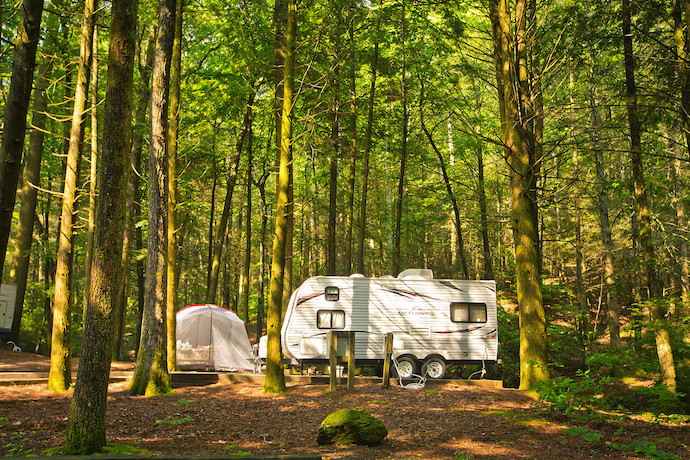 Tent and RV Camping at Vogel State Park