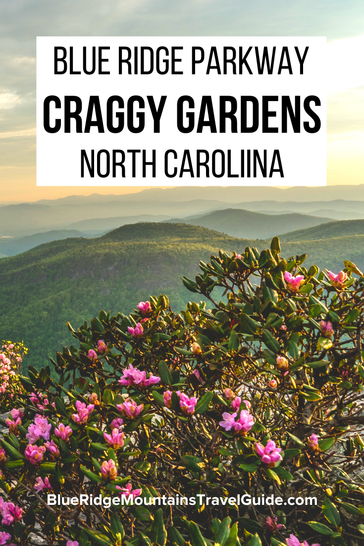 On the Blue Ridge Parkway, Craggy Gardens is the best spot to see spring blooms, autumn leaves, & stunning mountain views. Check out our full guide. |craggy gardens trail | craggy gardens hike | craggy pinnacle trail | craggy pinnacle | craggy garden | craggy mountain | gardens of the blue ridge | craggy gardens blue ridge parkway | craggy gardens visitor center | craggy gardens picnic area | great craggy mountains| craggy gardens asheville