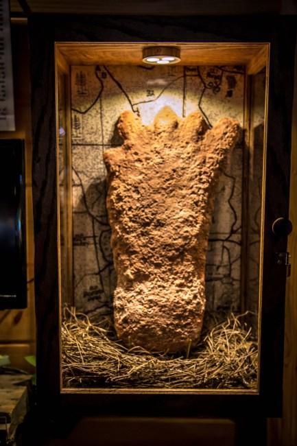 Bigfoot footprint at The Sasquatch Museum in Blue Ridge, GA