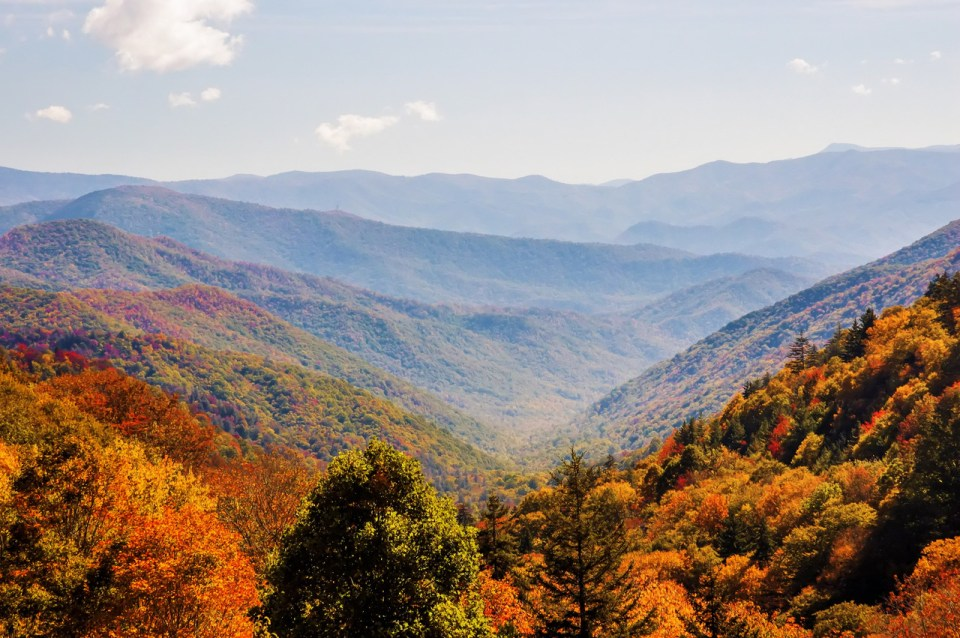 Autumn scenery in Maggie Valley, NC