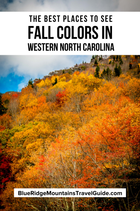 Fall in North Carolina: The Best Places to See Fall Colors in Western NC, including breathtaking photos taken along the Blue Ridge Parkway. | north carolina fall | north carolina in fall | blue ridge parkway fall | blue ridge parkway fall colors | north carolina fall colors | fall foliage north carolina | fall colors north carolina | fall colors in nc | north carolina fall foliage | best place to see fall colors | asheville fall colors | fall colors in north carolina |