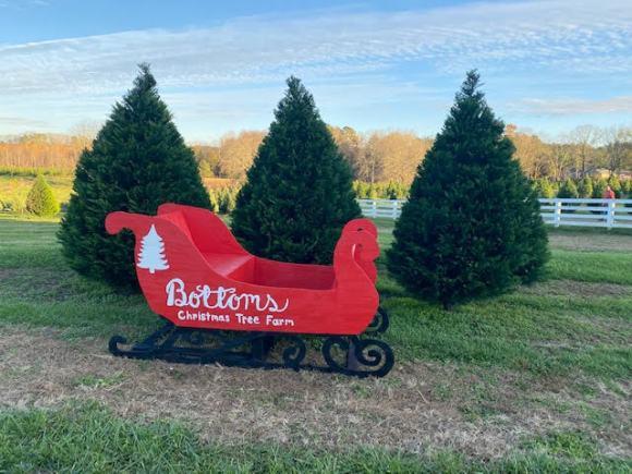 Bottoms Christmas Tree Farm