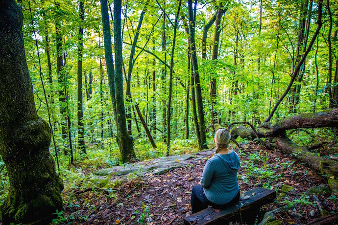 Mary Gabbett in the Forest at Norma Campbell Cove Trail in Black Rock Mountain State Park