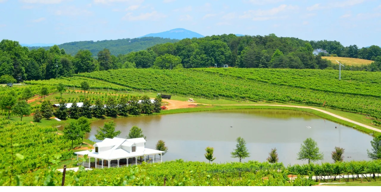 Wineries in the North Georgia Mountains