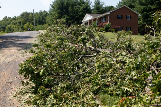 Debris from downed trees litter side of roads throughout the county.