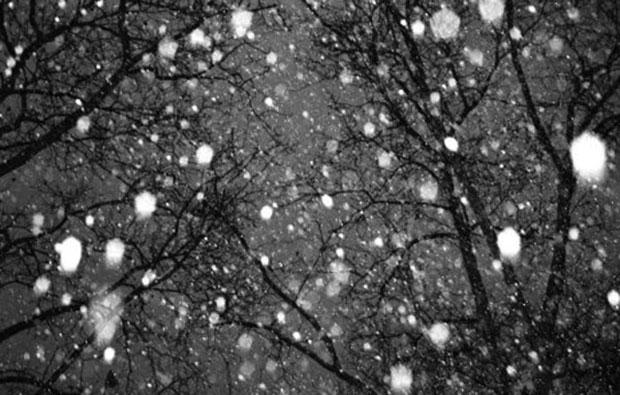 Snow falling before daybreak on Thursday.