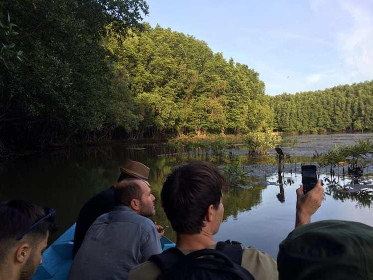 Du khách khám phá hệ sinh thái ngập mặn ở rừng Cần Giờ