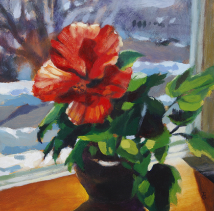 "Hibiscus & snow, 8""x8"", acrylic on panel, © 2014 Donna Grandin. Sold"