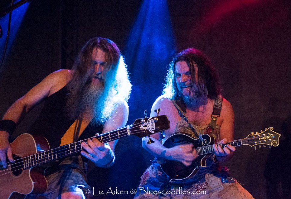 Hayseed Dixie, French Hard Rock Excites The Globe Cardiff Tonight