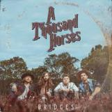 A Thousand Horses In Conversation with Bluesdoodles