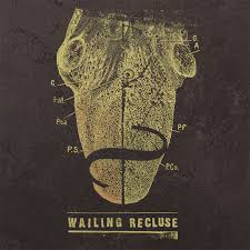 Wailing Recluse remains reclusive…and wailing!