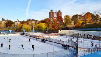 Photo of NY Rangers to hold open practice in Central Park