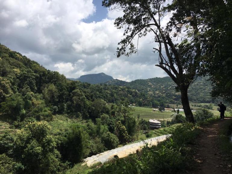 Chiang Mai (20)