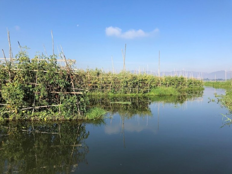Inle lake floating garden inle lake myanmar blue sky and wine