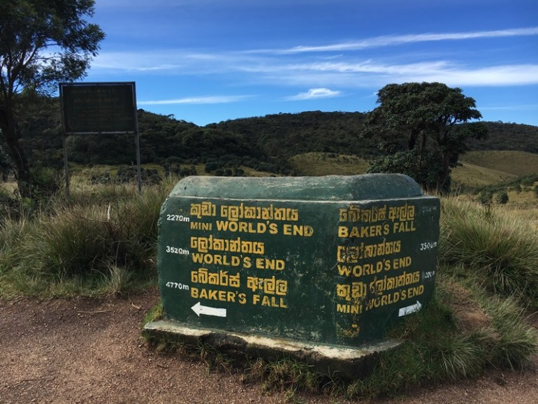 The road forks into two trails in Horton Plains, Blue Sky and Wine