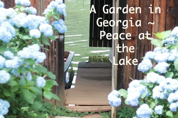 A Garden in Georgia ~ Peace at the Lake