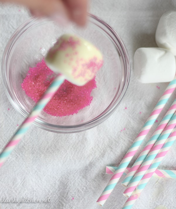 How to Make the Cutest, Edible Party Favors for any party using a few ingredients and a few supplies for a special thank you for your guests.