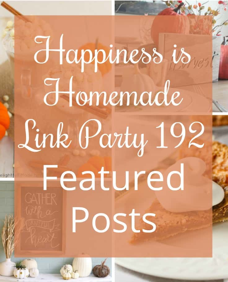 Happiness is Homemade Link Party 192. A place for bloggers and readers to share and enjoy home decor, DIY projects, party ideas, recipes. BlueskyatHome.com