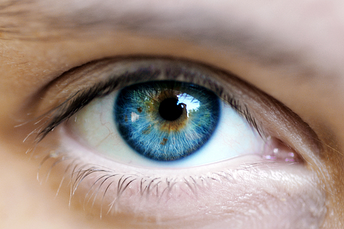 The Human Eye is 576 Mega Pixel!
