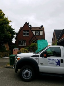 Experienced, Affordable Eastside Roofing Company | Blue Star Roofing
