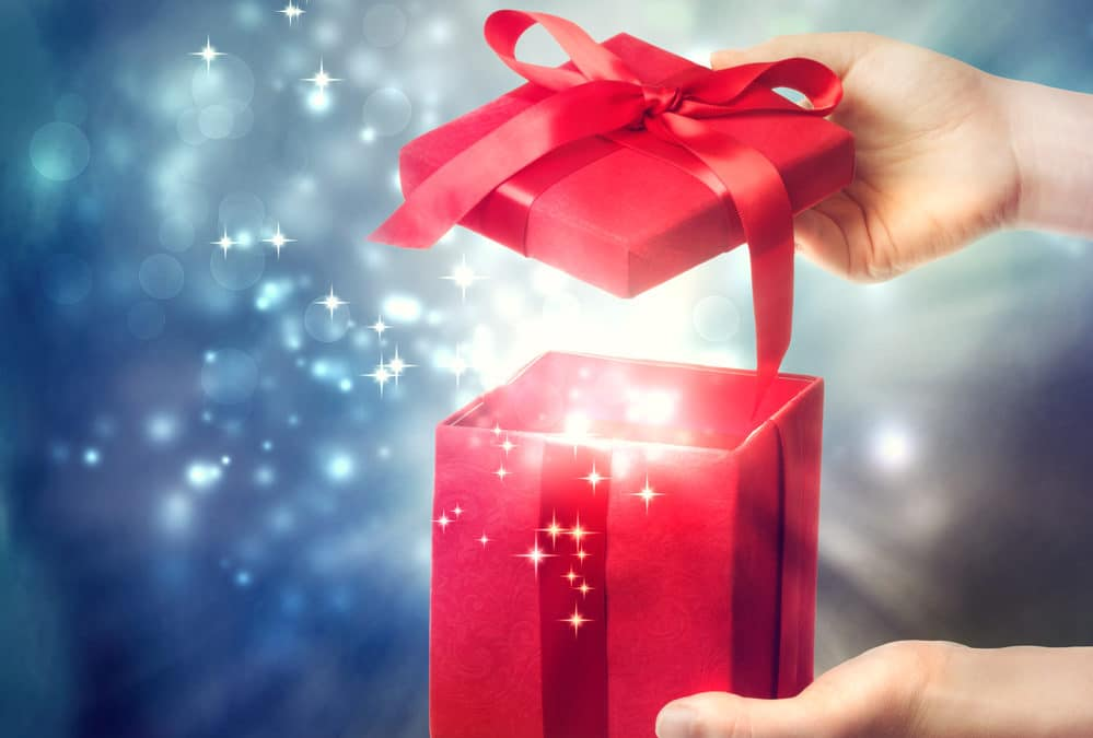 Top 9 Holiday Gift Giving Ideas