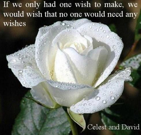 One Wish to make2
