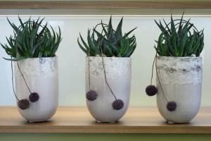 pflanzen_und_gefaesse_steinvase_pflanze_gruen