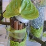 pflanzen_und_gefässe_tischschmuck_glas_holz_blatt_gruen