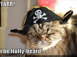 pirate lolcat