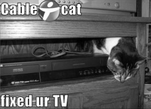 lolcat-cable