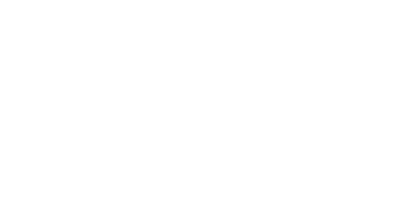 bvb-logo-final-white v2